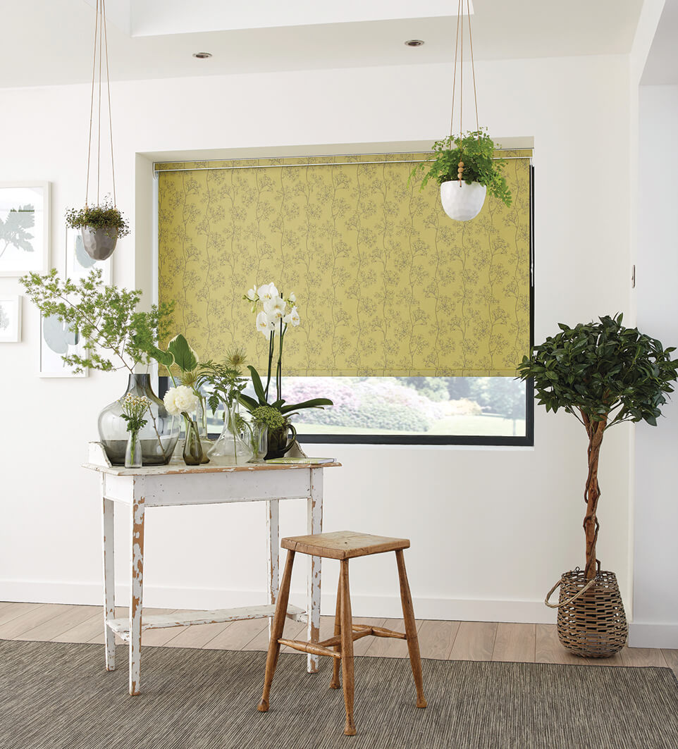roller blinds - Littlehampton Blinds